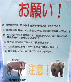 081218_mizugaki03.jpg