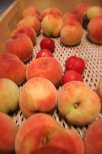 2_peach.jpg